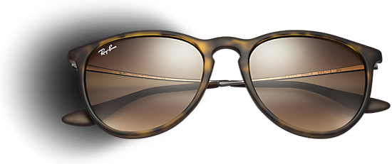 sunglasses ray ban  Erika Sunglasses