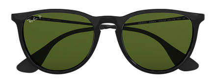 Ray-Ban ERIKA CLASSIC Black with Green Classic G-15 lens