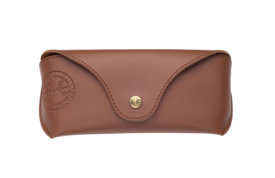 Ray-Ban SPECIAL EDITION CASE Brown