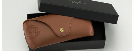 Ray-Ban SPECIAL EDITION CASE Braun