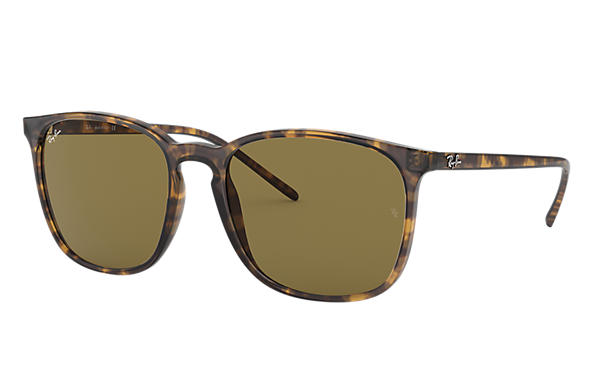 f9c5278b21b Ray-Ban RB4387 Tortoise - Nylon - Brown Lenses - 0RB4387710 7356 ...