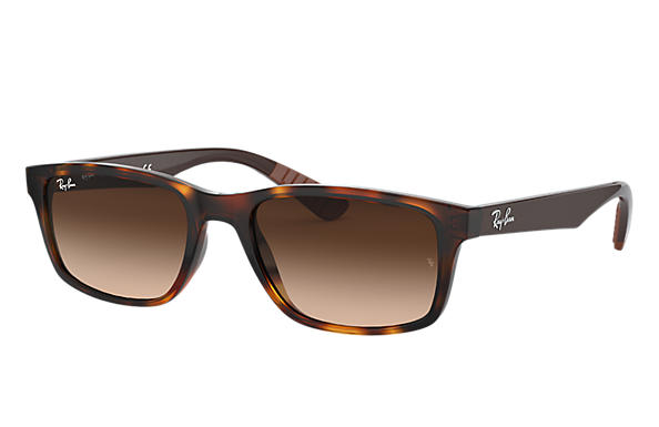Ray-Ban 0RB4234-RB4234 Tartaruga; Marrone SUN