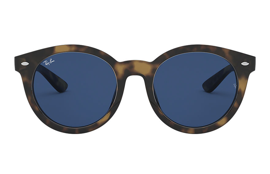 Ray-Ban  sunglasses RB4261D MALE 009 rb4261d 호피색 8053672618082