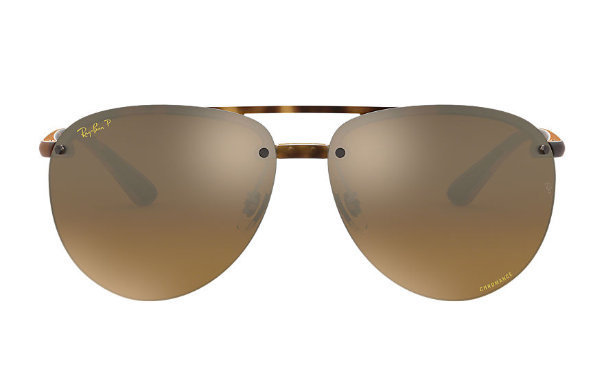 Ray-Ban  sunglasses RB4293CH MALE 001 rb4293 chromance 호피색 8053672839333