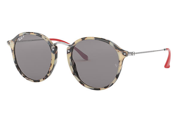 Ray-Ban 0RB2447-ROUND FLECK POP Tortoise; Silver SUN