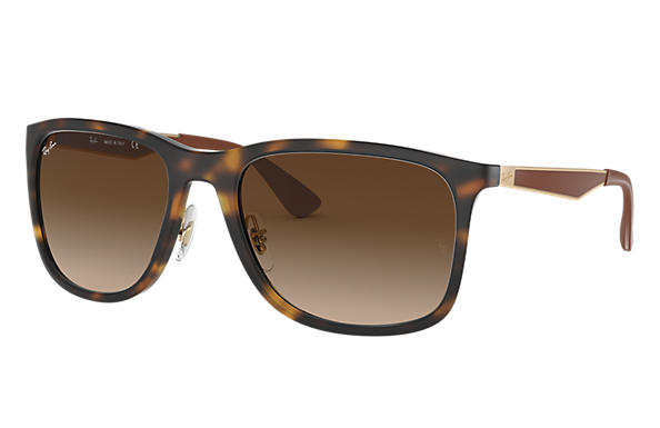 Ray-Ban 0RB4313-RB4313 Tortoise; Gold SUN