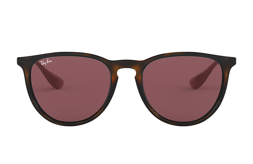 Ray-Ban  sunglasses RB4171F UNISEX 010 erika color mix 玳瑁啡色 8053672985344
