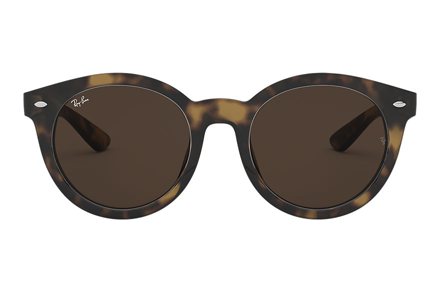 Ray-Ban  sunglasses RB4261D MALE 001 rb4261d 호피색 8056597027731