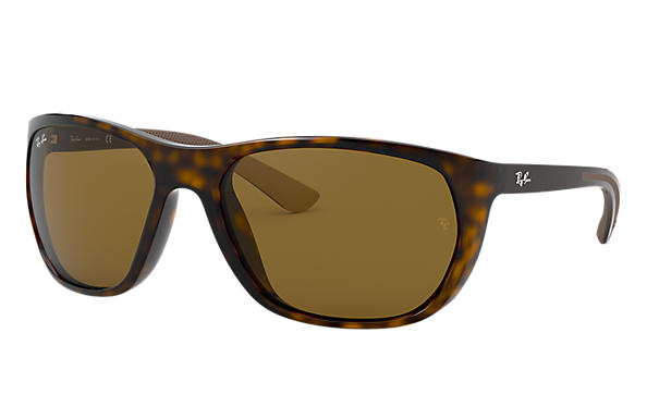 Ray-Ban 0RB4307-RB4307 Tartaruga; Marrone SUN