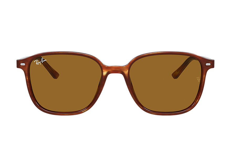 Ray-Ban  sunglasses RB2193 UNISEX 001 leonard striped havana 8056597317962
