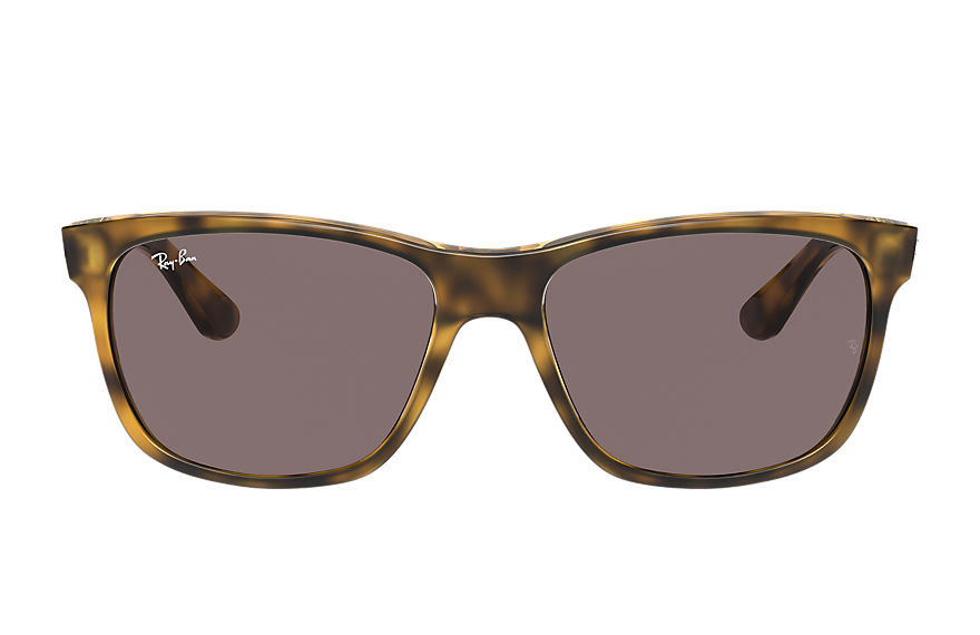 Ray-Ban  oculos de sol RB4181 MALE 003 rb4181 shiny tortoise 8056597364478