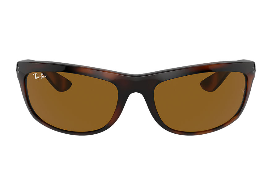 Ray-Ban  sunglasses RB4089 MALE 003 balorama tortoise 8056597364911
