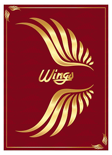 Welcome to Ray-Ban Wings 24K