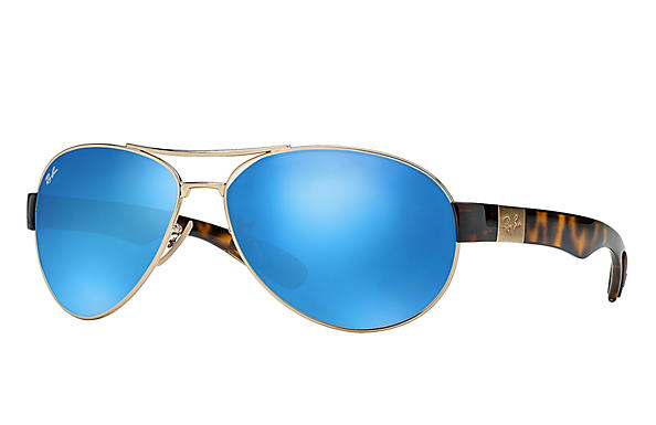 Ray-Ban 0RB3509-RB3509 Gold; Havana ROX_FRAME