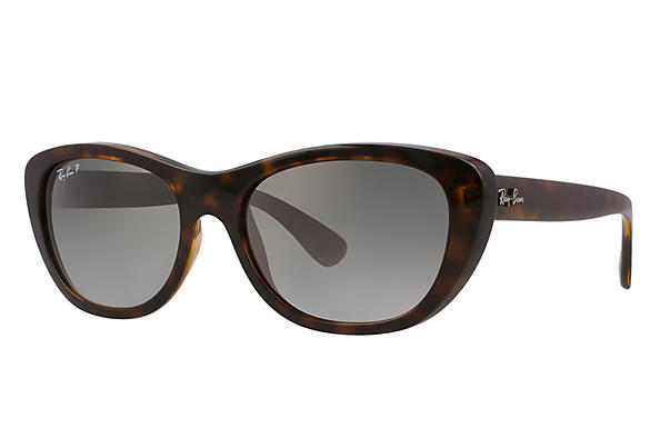 Ray-Ban 0RB4227-RB4227 Tortoise ROX_FRAME